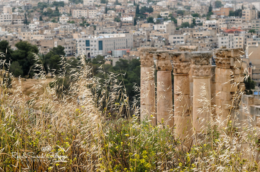jordan-exodus-rob-sarah-gillespie-2013-004