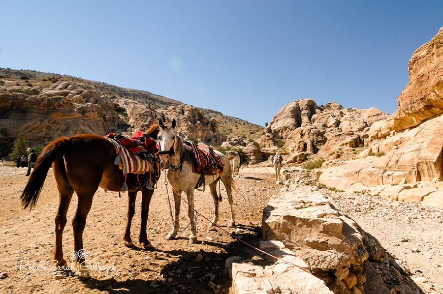 jordan-exodus-rob-sarah-gillespie-2013-029