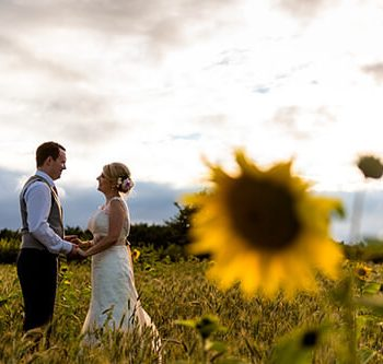 Bride and groom holding hands in sunflower field at Wethele Manor