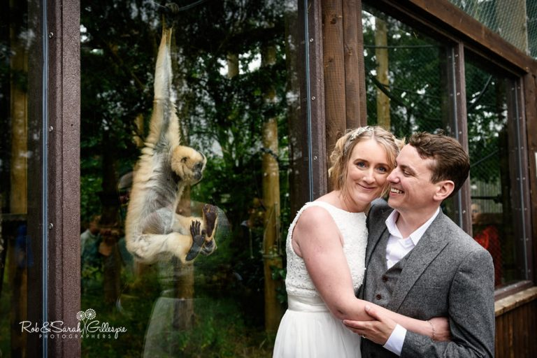 Dorset Wedding Photography at Monkey World by Rob & Sarah Gillespie