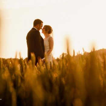 Bride and groom in beautiful fields at Swallows Nest Barn