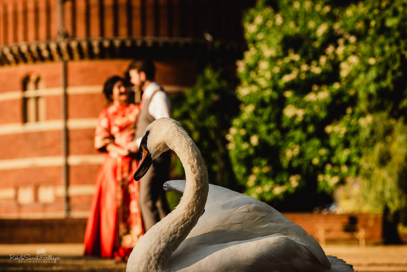 Bride and groom at RSC in Stratford upon Avon with swan in foreground