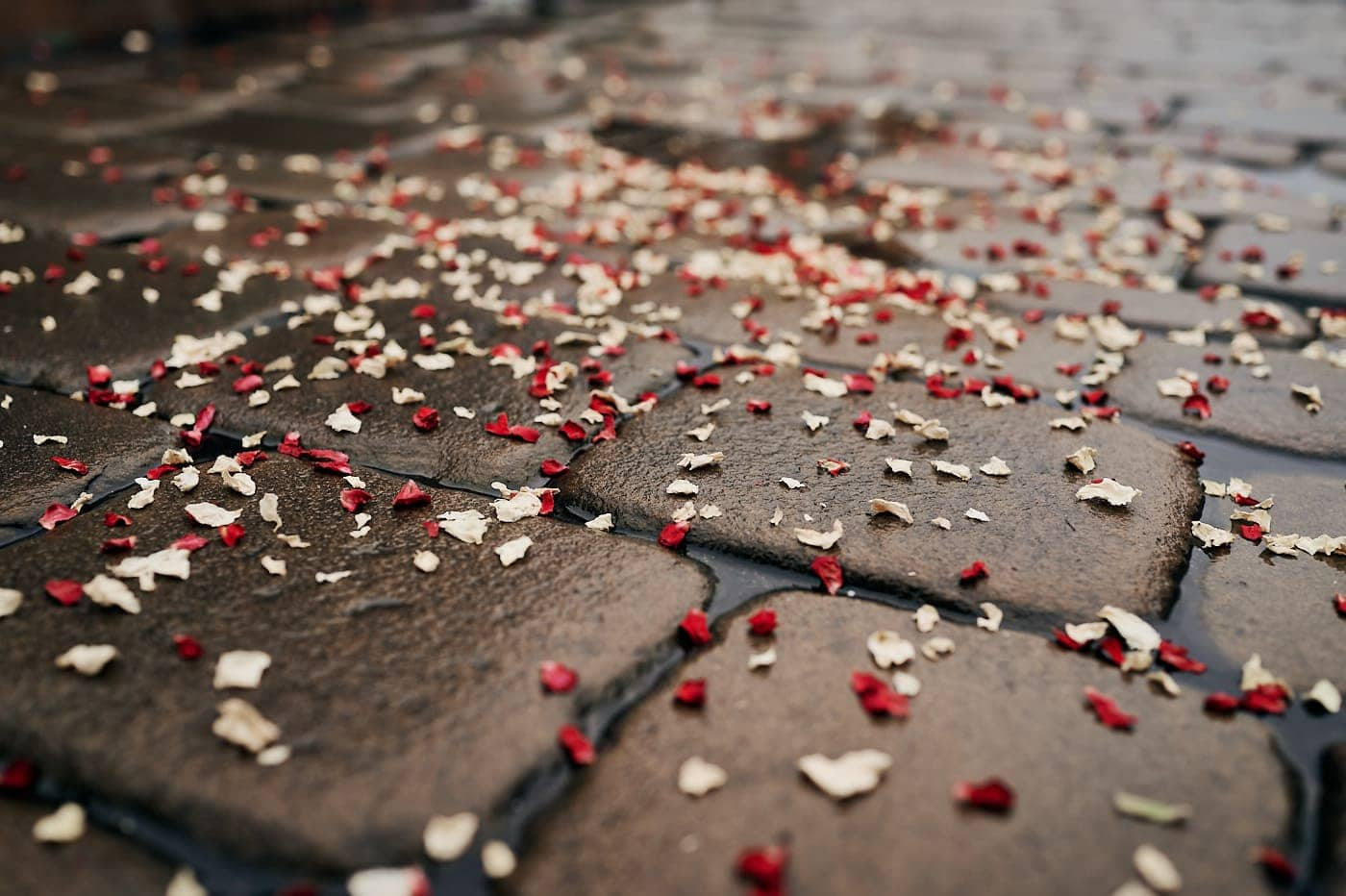Red and cream confetti on wet cobbled stone in Stratford-upon-Avon