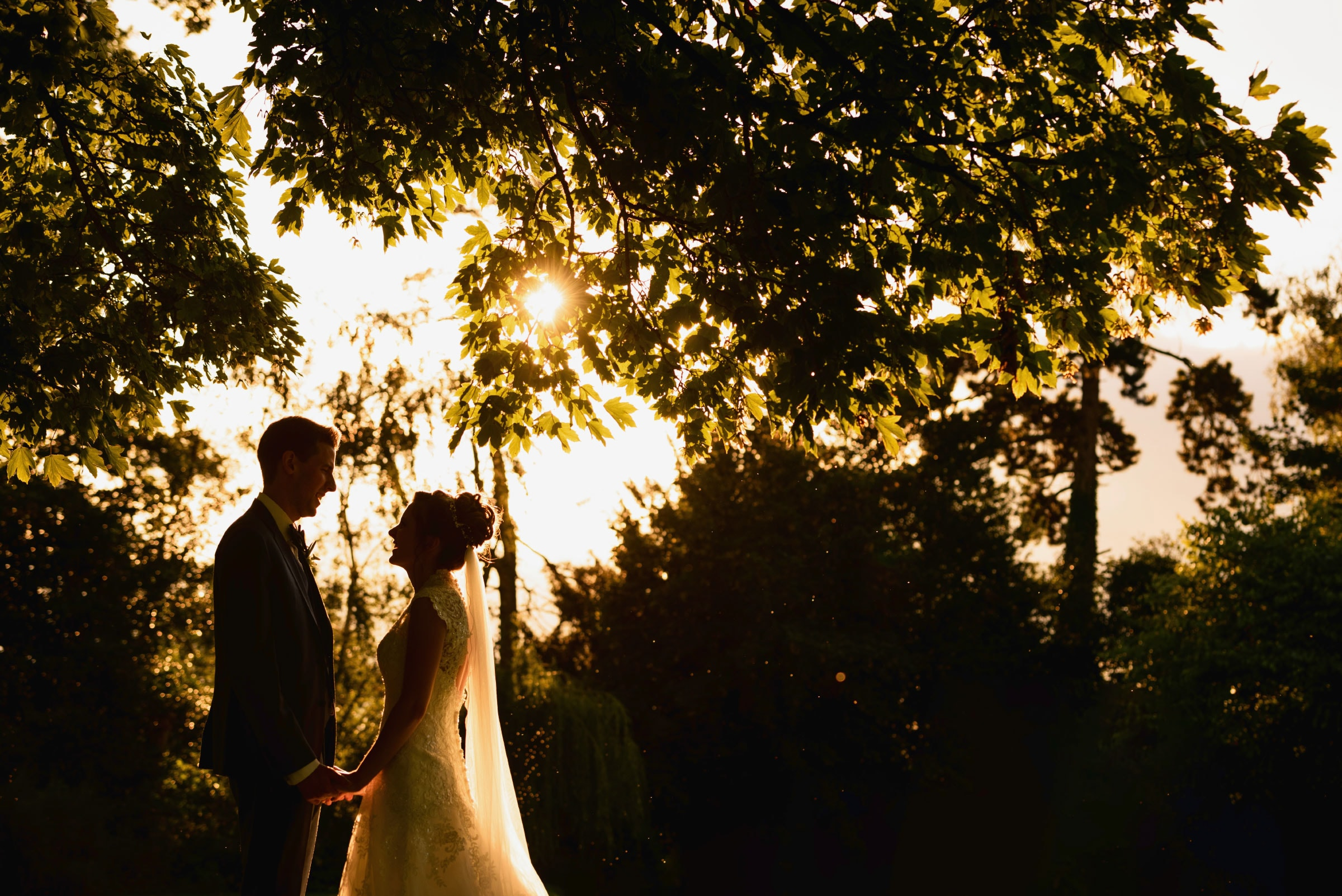 Bride and groom silhouetted against evening sunlight and surrounded by trees